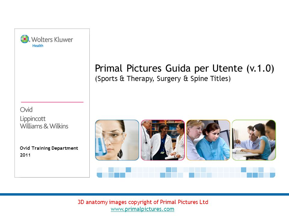 Ovid Training Department 2011 Primal Pictures Guida per Utente (v.1.0) (Sports & Therapy, Surgery & Spine Titles) 3D anatomy images copyright of Primal Pictures Ltd www.primalpictures.com