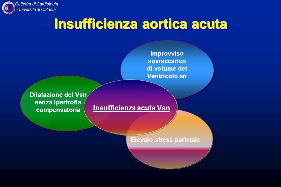 Cattedra di Cardiologia Università di Catania Insufficienza aortica acuta Insufficienza acuta Vsn Dilatazione del Vsn senza ipertrofia compensatoria I