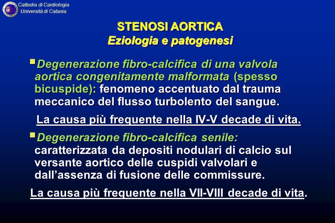 Cattedra di Cardiologia Università di Catania AUSCULTAZIONE La componente aortica del II tono (A2) risulta spesso ridotta dintensità o fusa con la componente polmonare (P2) o dopo la componente polmonare (sdoppiamento paradosso del II tono) IV tono aggiunto presistolico, in corrispondenza della più energica contrazione atriale AUSCULTAZIONE La componente aortica del II tono (A2) risulta spesso ridotta dintensità o fusa con la componente polmonare (P2) o dopo la componente polmonare (sdoppiamento paradosso del II tono) IV tono aggiunto presistolico, in corrispondenza della più energica contrazione atriale STENOSI AORTICA Esame obiettivo STENOSI AORTICA Esame obiettivo