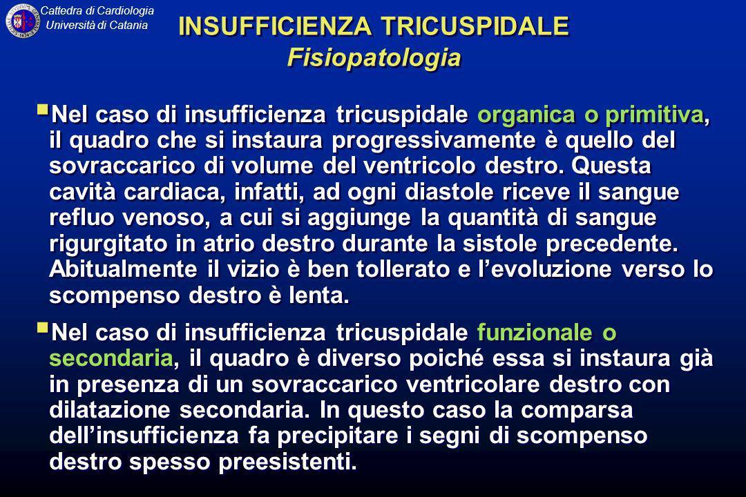 Cattedra di Cardiologia Università di Catania Nel caso di insufficienza tricuspidale organica o primitiva, il quadro che si instaura progressivamente