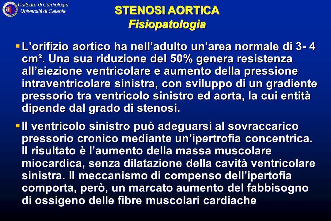Cattedra di Cardiologia Università di Catania Lorifizio aortico ha nelladulto unarea normale di 3- 4 cm². Una sua riduzione del 50% genera resistenza