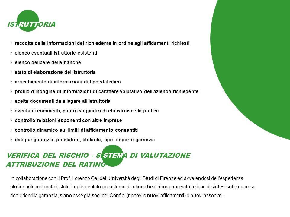 ISTRUTTORIA RUTT raccolta delle informazioni del richiedente in ordine agli affidamenti richiesti In collaborazione con il Prof. Lorenzo Gai dell'Univ