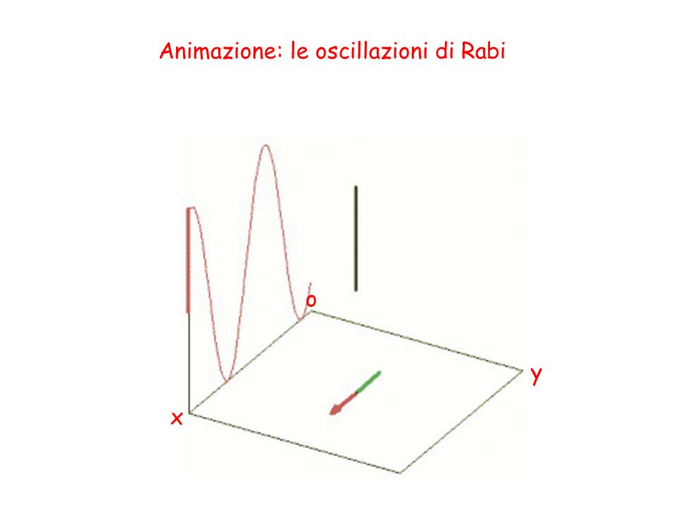 Animazione: le oscillazioni di Rabi o x y