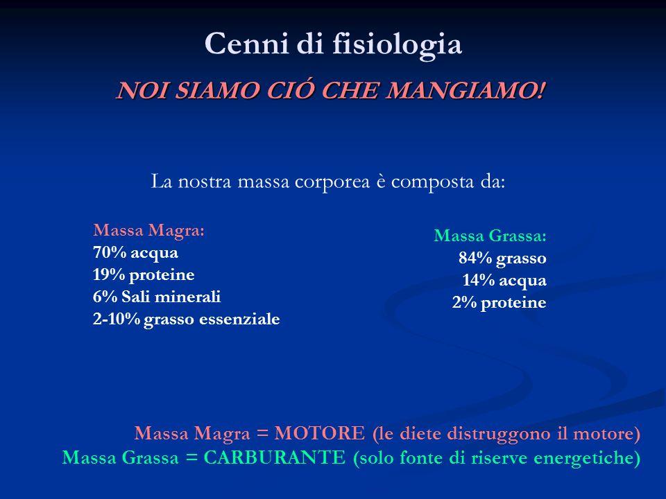 Cenni di fisiologia: Processi Metabolici FABBISOGNO CALORICO QUOTIDIANO: METABOLISMO BASALE: U = 1600-1800 Kcal D =1200-1400 Kcal FORMULA CALCOLO B.