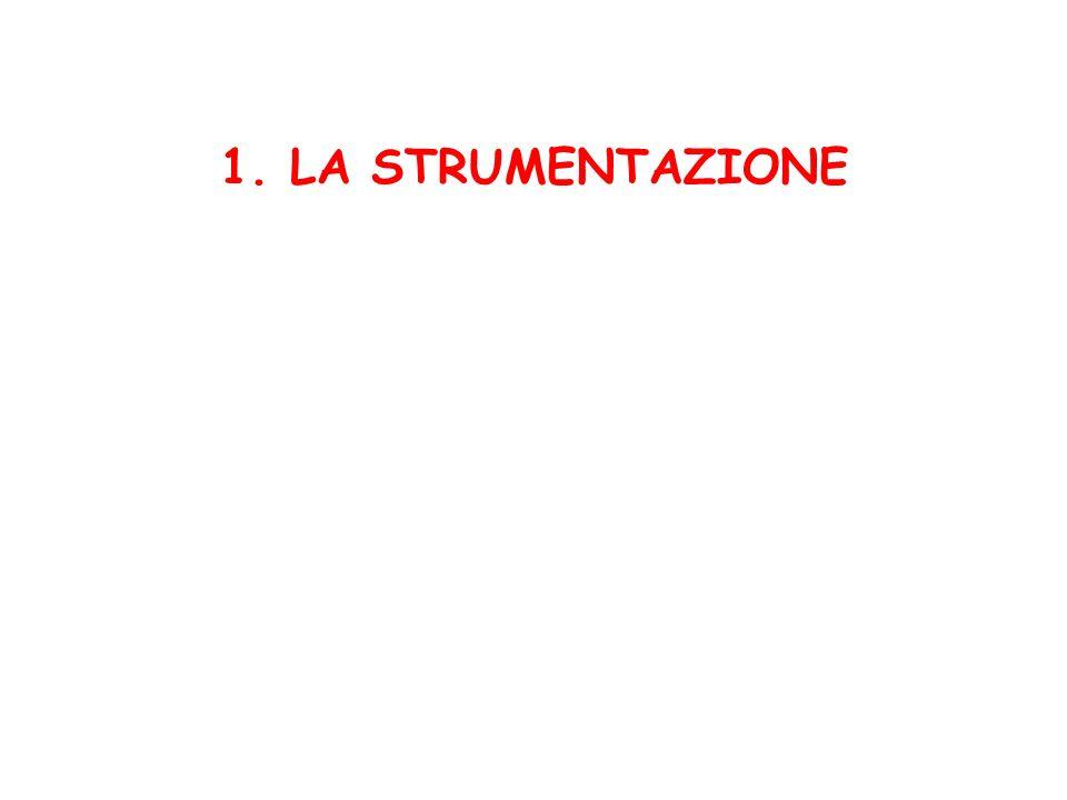 1. LA STRUMENTAZIONE