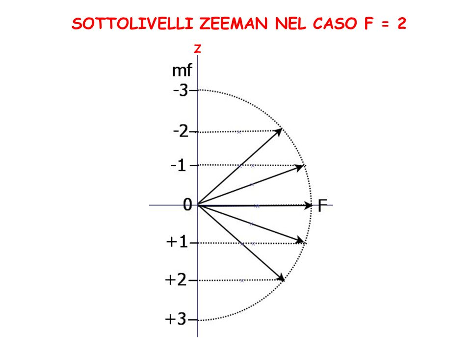 SOTTOLIVELLI ZEEMAN NEL CASO F = 2 z