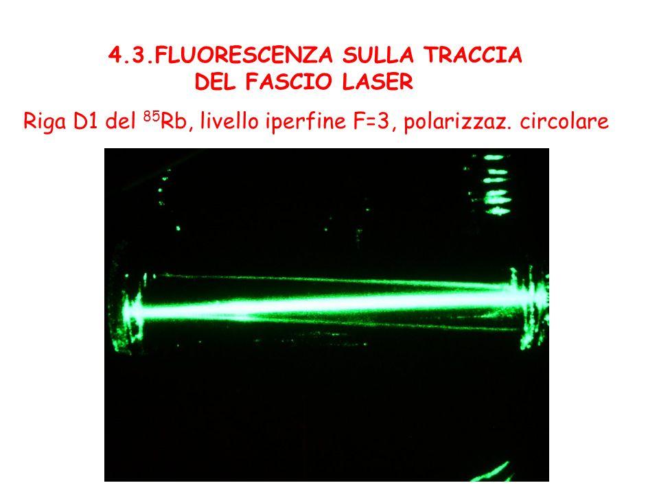 4.3.FLUORESCENZA SULLA TRACCIA DEL FASCIO LASER Riga D1 del 85 Rb, livello iperfine F=3, polarizzaz. circolare