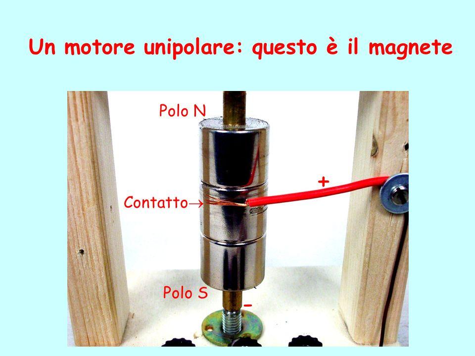 Un motore unipolare: questo è il magnete Polo N Polo S Contatto + -