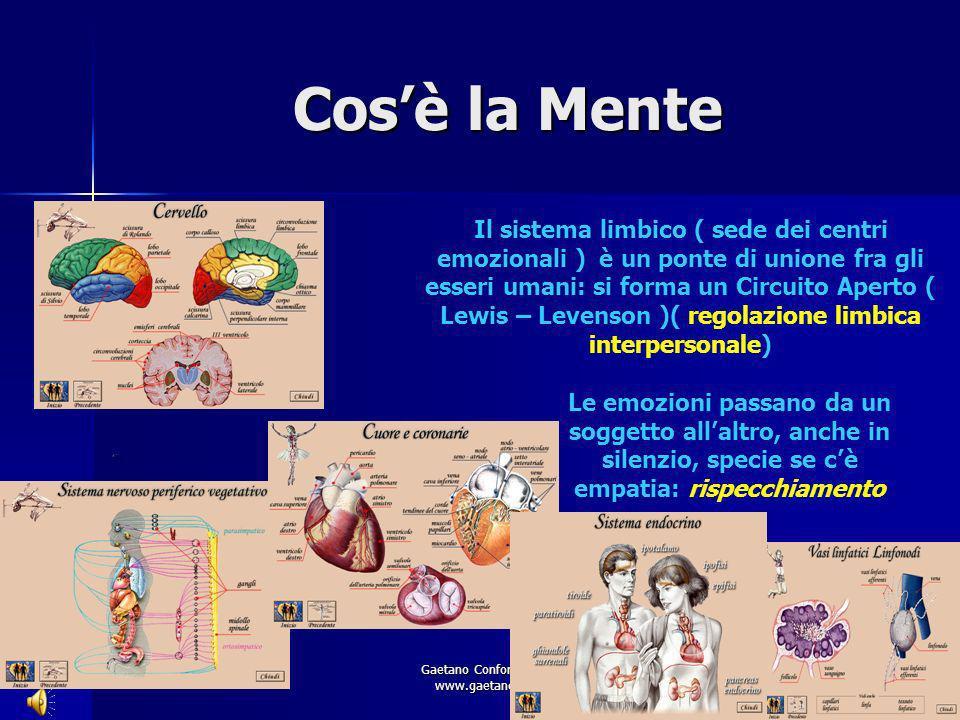 Gaetano Conforto - Le relazioni www.gaetanoconforto.com Cosè la Mente