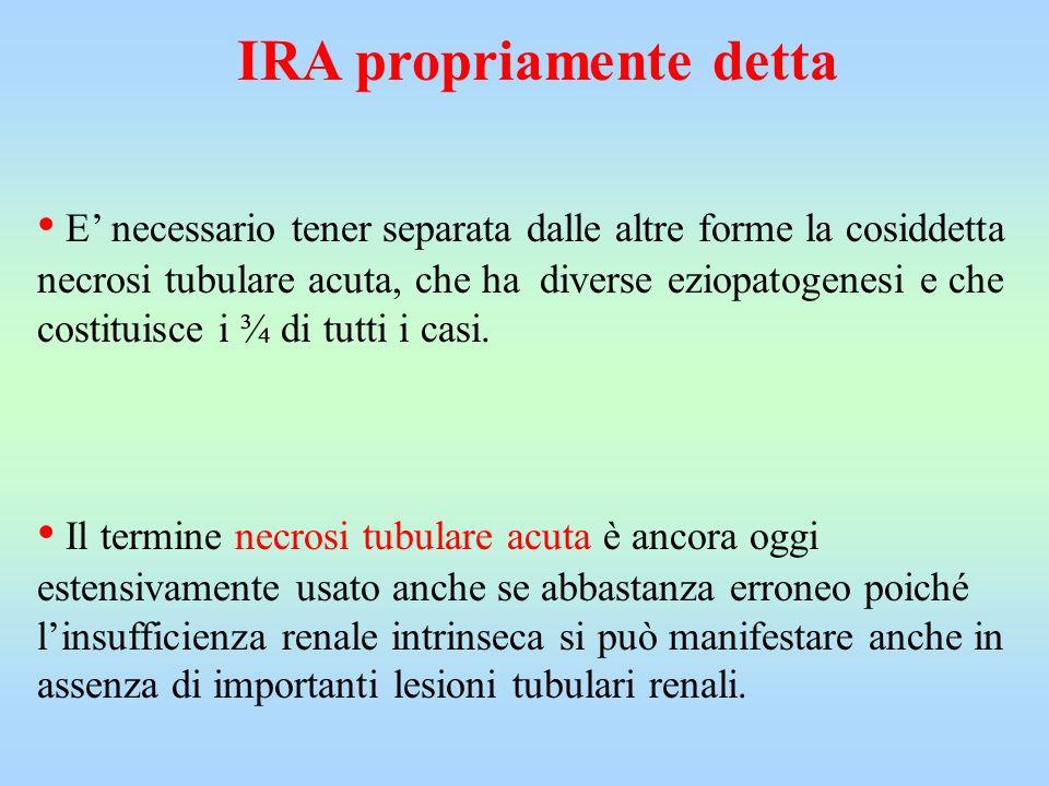 IRA propriamente detta E necessario tener separata dalle altre forme la cosiddetta necrosi tubulare acuta, che ha diverse eziopatogenesi e che costitu