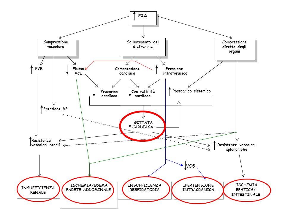PIA Compressione vascolare Compressione vascolare Compressione diretta degli organi Sollevamento del diaframma PVRFlusso VCI Compressione cardiaca Pre