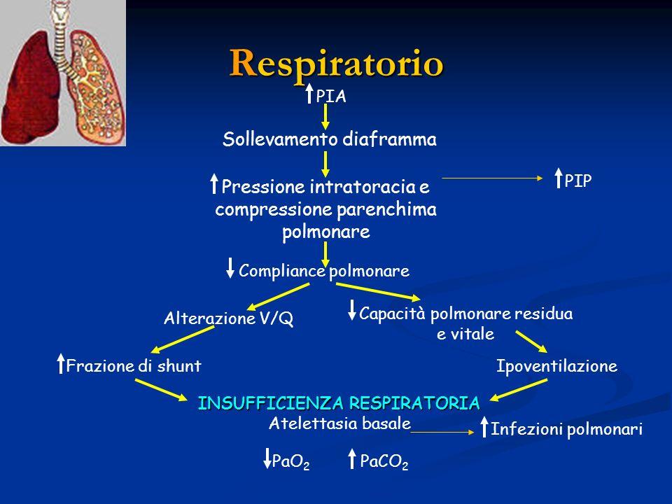 Respiratorio Sollevamento diaframma PIA Pressione intratoracia e compressione parenchima polmonare Compliance polmonare Alterazione V/Q Frazione di sh