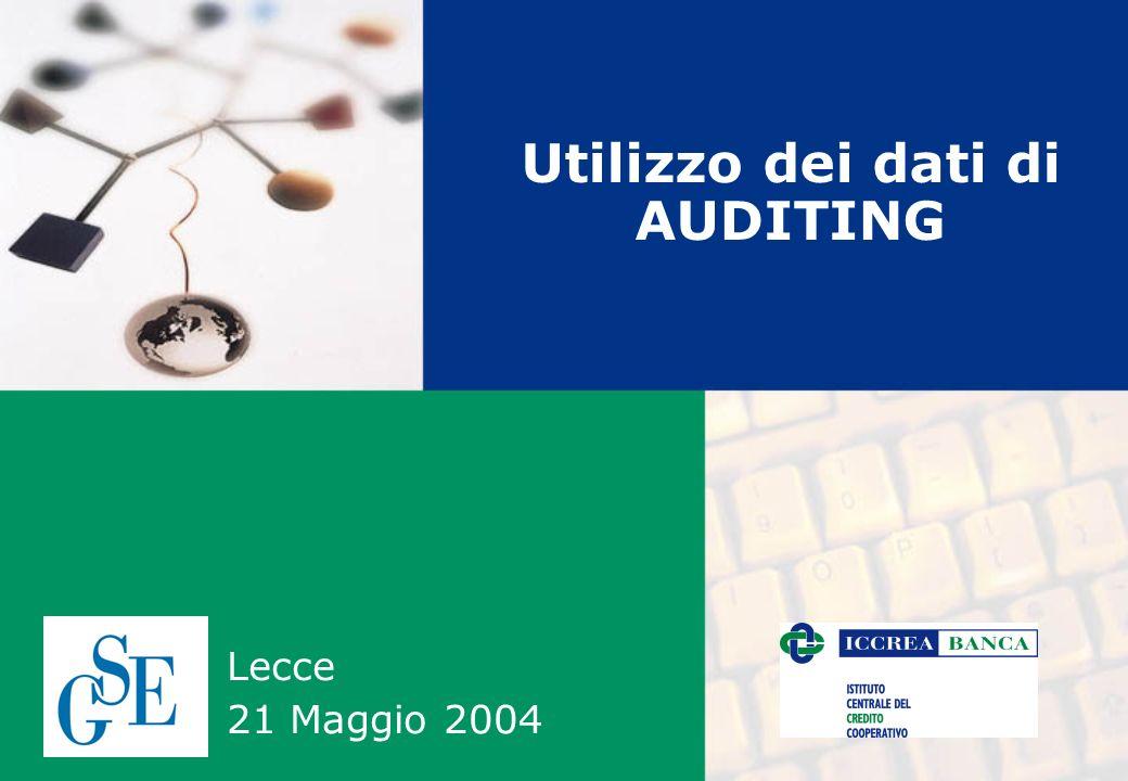 Utilizzo dei dati di AUDITING Lecce 21 Maggio 2004