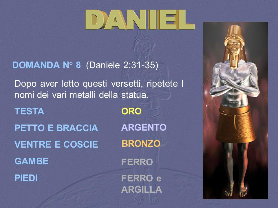 DOMANDA N° 8 (Daniele 2:31 35) Dopo aver letto questi versetti, ripetete I nomi dei vari metalli della statua. TESTA PETTO E BRACCIA VENTRE E COSCIE G