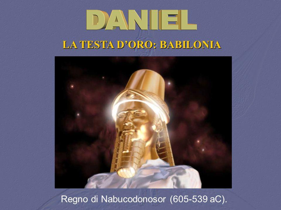 LA TESTA DORO: BABILONIA Regno di Nabucodonosor (605 539 aC).
