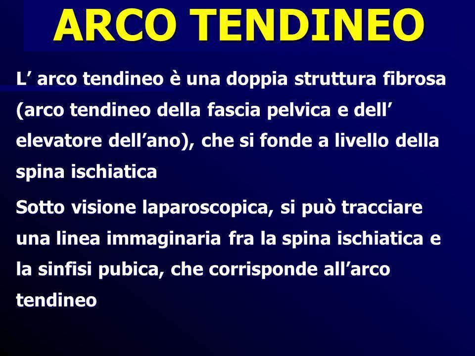 CORREZIONE DEI DIFETTI LATERALI DEL COMPARTIMENTO ANTERIORE RIPARAZIONE PARAVAGINALE ACCESSO ALLO SPAZIO DEL RETZIUS, IDENTIFICAZIONE REPERI ANATOMICI ACCOSTAMENTO DELLA FASCIA PUBOCERVICALE ALLARCO TENDINEO DELLA FASCIA ENDOPELVICA