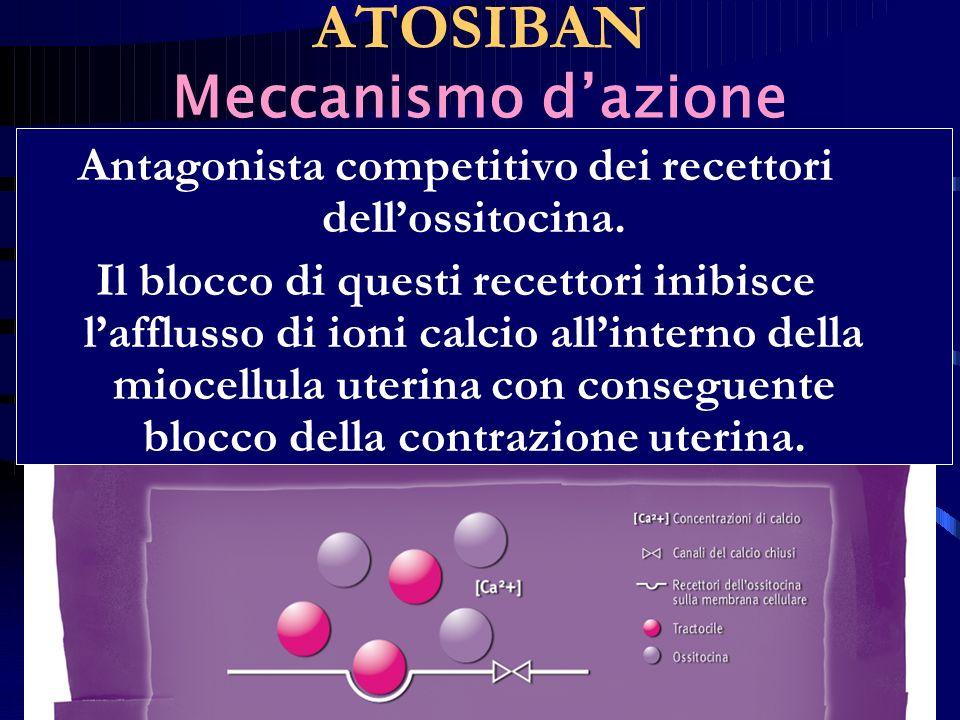 Antagonista competitivo dei recettori dellossitocina. Il blocco di questi recettori inibisce lafflusso di ioni calcio allinterno della miocellula uter