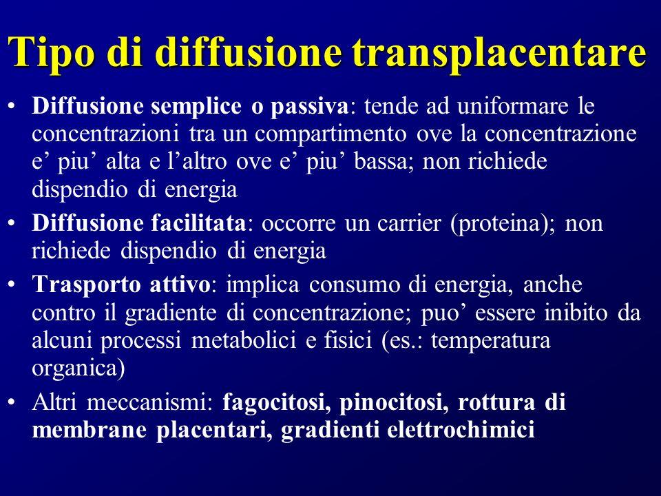 Tipo di diffusione transplacentare Diffusione semplice o passiva: tende ad uniformare le concentrazioni tra un compartimento ove la concentrazione e p