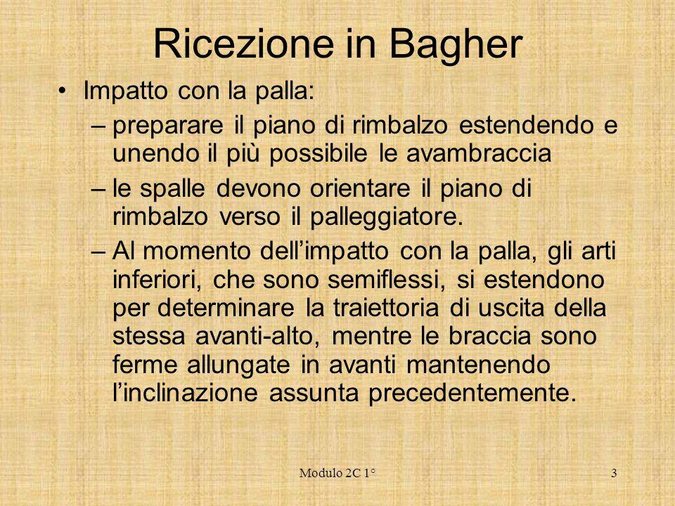 Modulo 2C 1°3 Ricezione in Bagher Impatto con la palla: –preparare il piano di rimbalzo estendendo e unendo il più possibile le avambraccia –le spalle