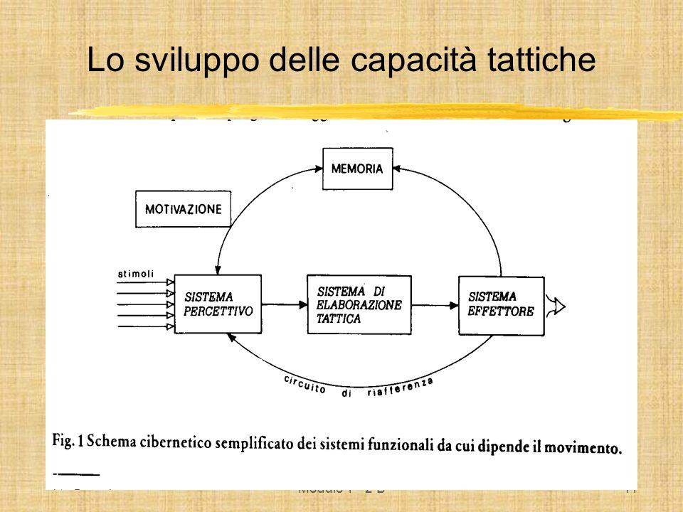 Modulo 1° 2 B11 Lo sviluppo delle capacità tattiche
