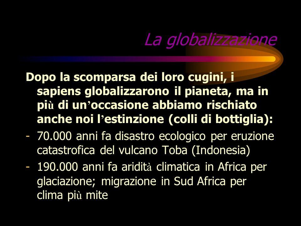 … e in Asia? Homo giavanensis, discendente tardivo di Homo erectus abitante a Giava Homo florensis, pigmeo di H. erectus, viveva a Flores, isola dell