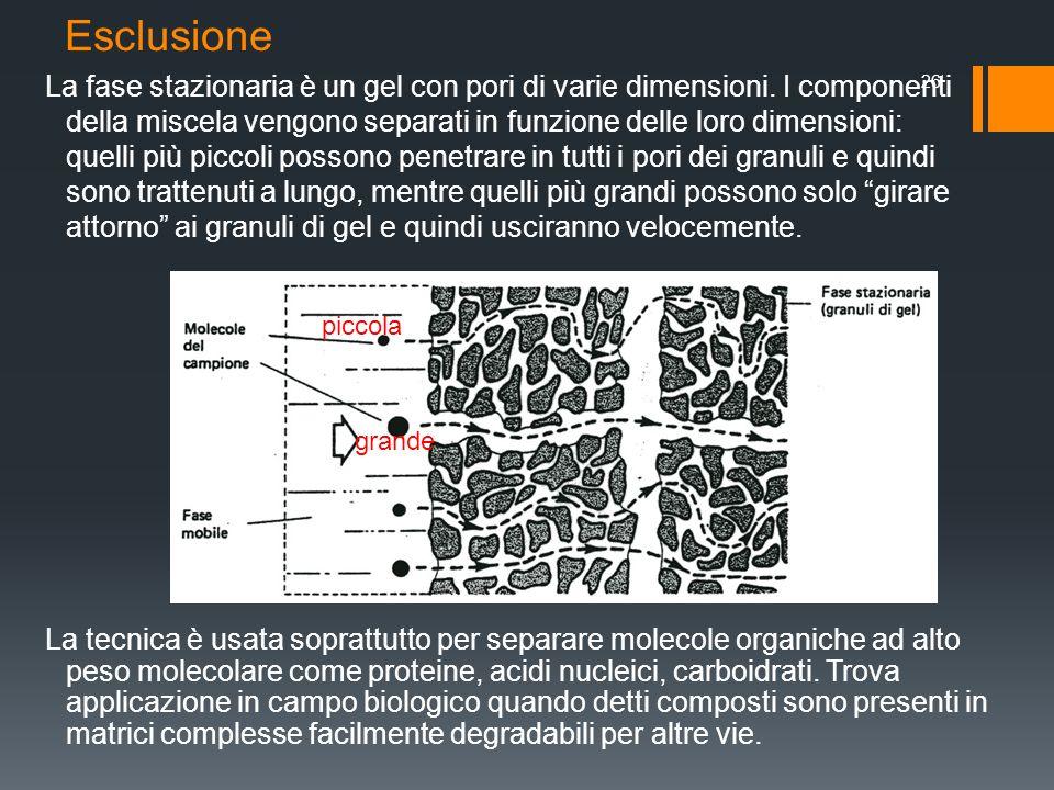 Esclusione La fase stazionaria è un gel con pori di varie dimensioni. I componenti della miscela vengono separati in funzione delle loro dimensioni: q