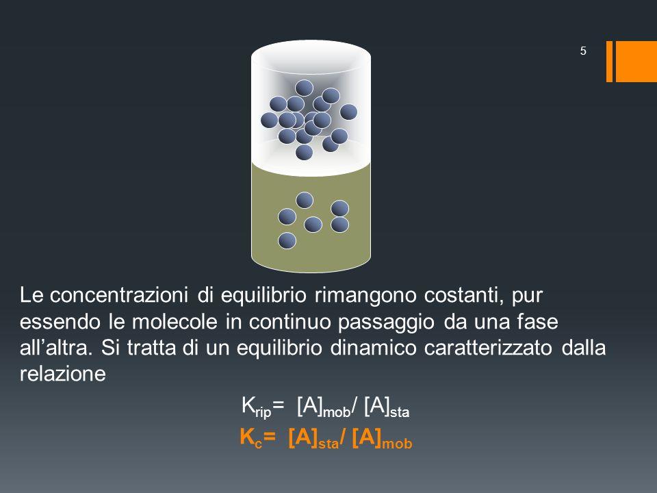 Le concentrazioni di equilibrio rimangono costanti, pur essendo le molecole in continuo passaggio da una fase allaltra. Si tratta di un equilibrio din