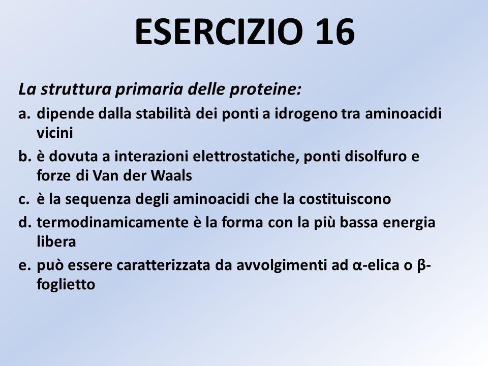 ESERCIZIO 16 La struttura primaria delle proteine: a.dipende dalla stabilità dei ponti a idrogeno tra aminoacidi vicini b.è dovuta a interazioni elett