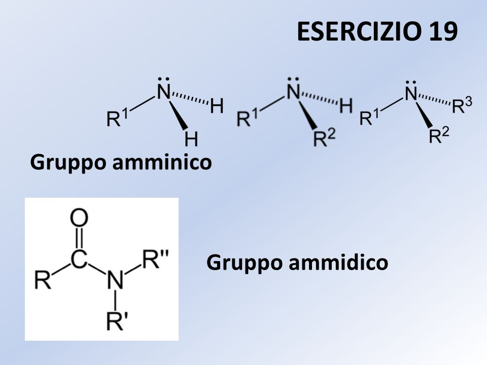 Gruppo ammidico ESERCIZIO 19 Gruppo amminico