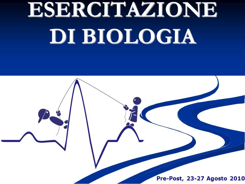 ESERCITAZIONE DI BIOLOGIA Pre-Post, 23-27 Agosto 2010