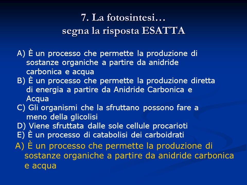 7. La fotosintesi… segna la risposta ESATTA A) È un processo che permette la produzione di sostanze organiche a partire da anidride carbonica e acqua