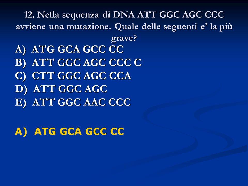 12. Nella sequenza di DNA ATT GGC AGC CCC avviene una mutazione. Quale delle seguenti e' la più grave? A) ATG GCA GCC CC B) ATT GGC AGC CCC C C) CTT G