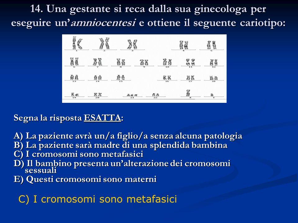 14. Una gestante si reca dalla sua ginecologa per eseguire unamniocentesi e ottiene il seguente cariotipo: Segna la risposta ESATTA: A) La paziente av