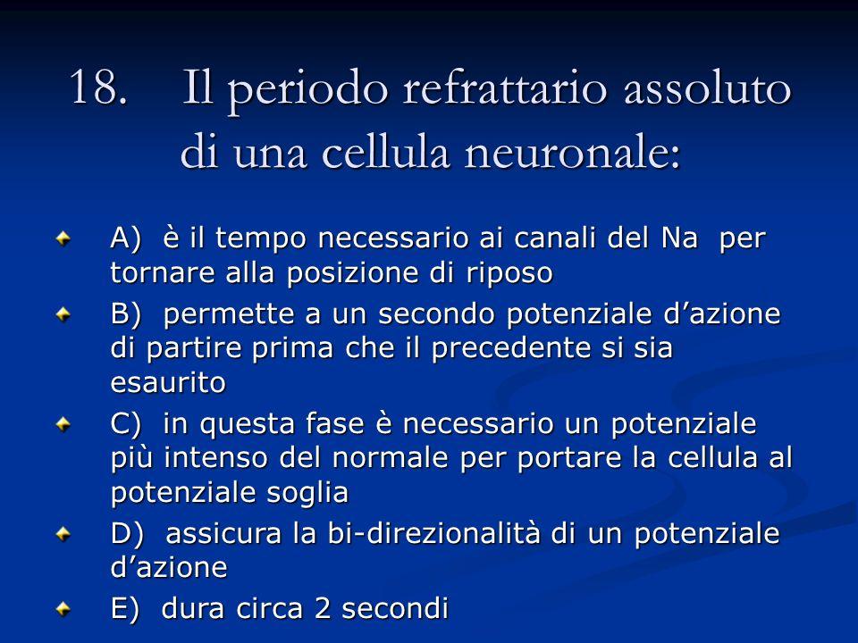 18. Il periodo refrattario assoluto di una cellula neuronale: A) è il tempo necessario ai canali del Na per tornare alla posizione di riposo B) permet