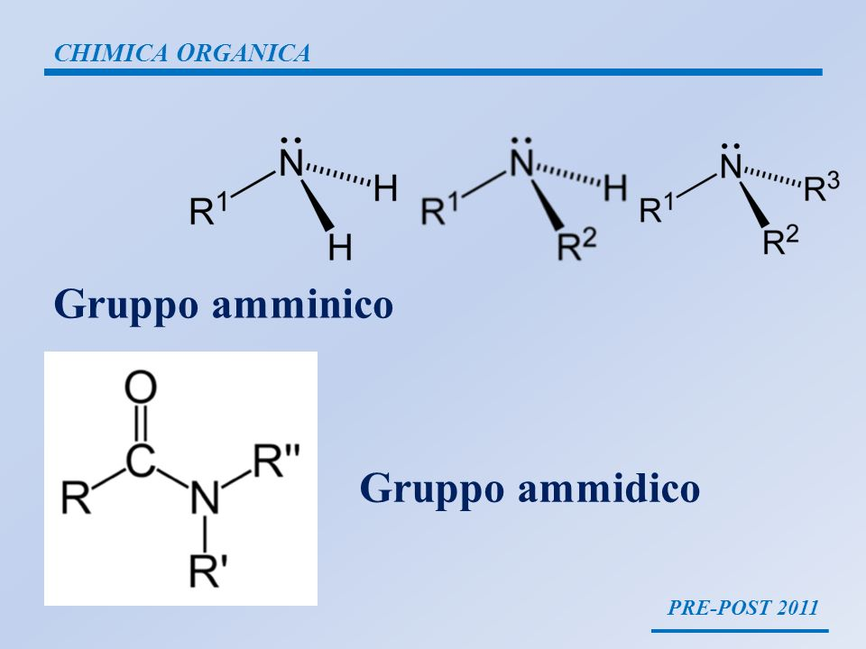 PRE-POST 2011 CHIMICA ORGANICA Gruppo amminico Gruppo ammidico