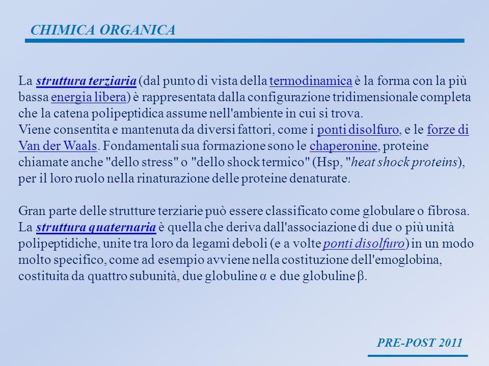 PRE-POST 2011 CHIMICA ORGANICA La struttura terziaria (dal punto di vista della termodinamica è la forma con la più bassa energia libera) è rappresent