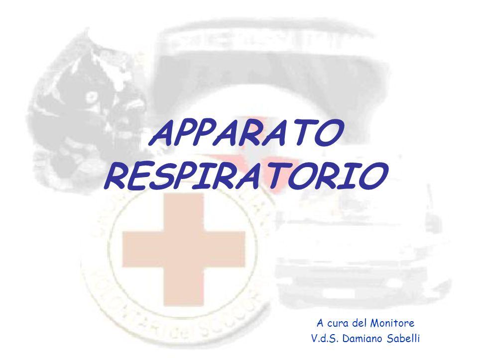 APPARATO RESPIRATORIO A cura del Monitore V.d.S. Damiano Sabelli