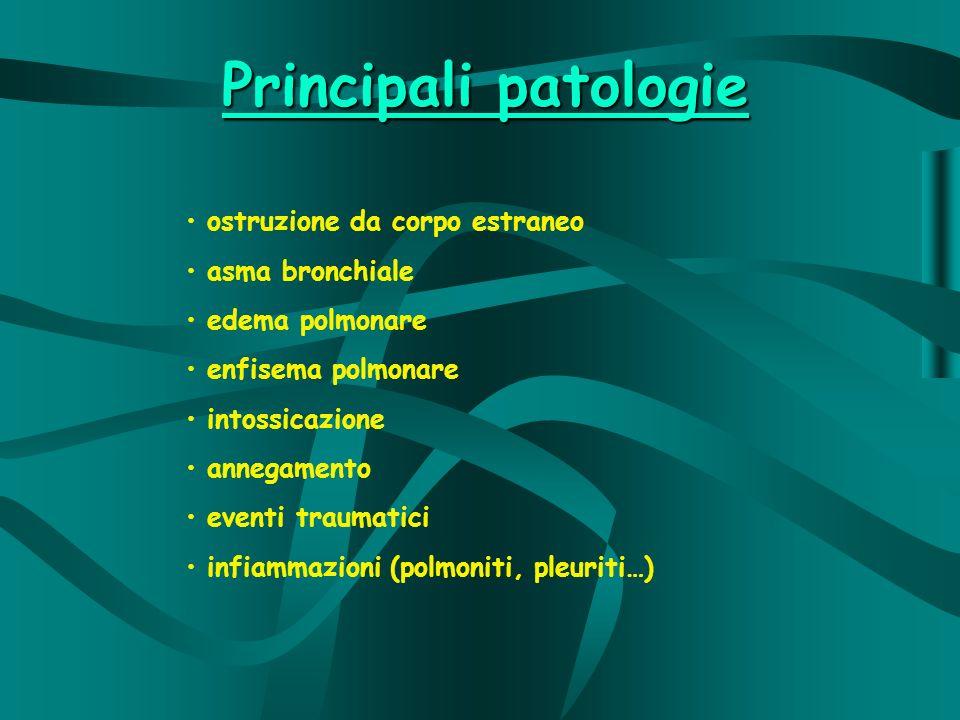 Principali patologie ostruzione da corpo estraneo asma bronchiale edema polmonare enfisema polmonare intossicazione annegamento eventi traumatici infiammazioni (polmoniti, pleuriti…)