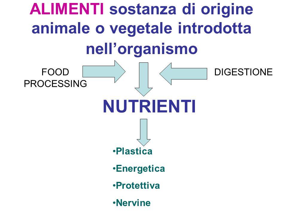 ALIMENTI sostanza di origine animale o vegetale introdotta nellorganismo NUTRIENTI FOOD PROCESSING DIGESTIONE Plastica Energetica Protettiva Nervine