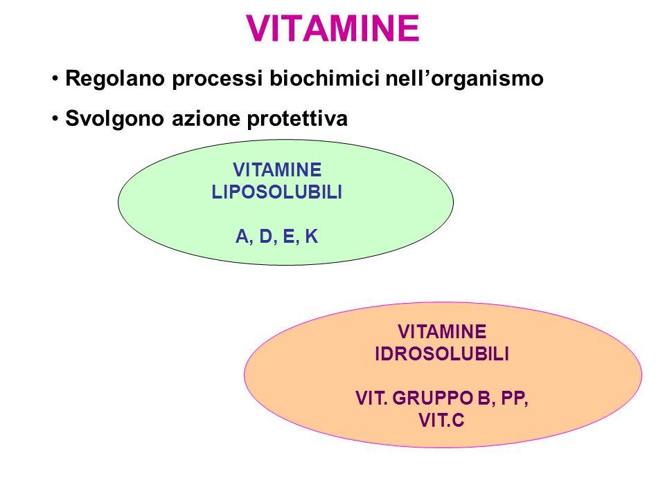 VITAMINE Regolano processi biochimici nellorganismo Svolgono azione protettiva VITAMINE LIPOSOLUBILI A, D, E, K VITAMINE IDROSOLUBILI VIT. GRUPPO B, P