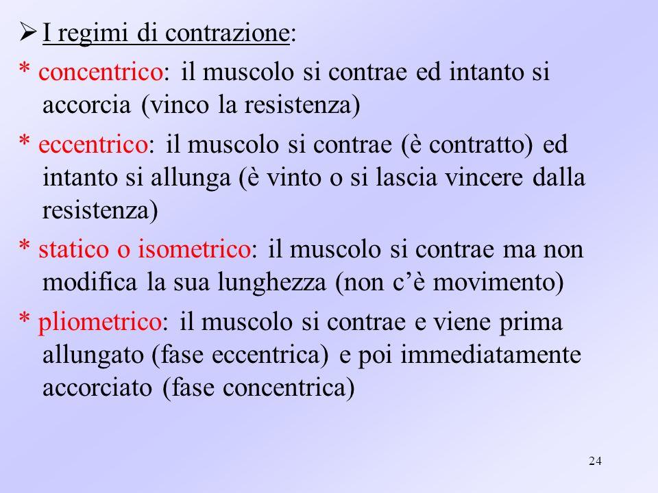 24 I regimi di contrazione: * concentrico: il muscolo si contrae ed intanto si accorcia (vinco la resistenza) * eccentrico: il muscolo si contrae (è c