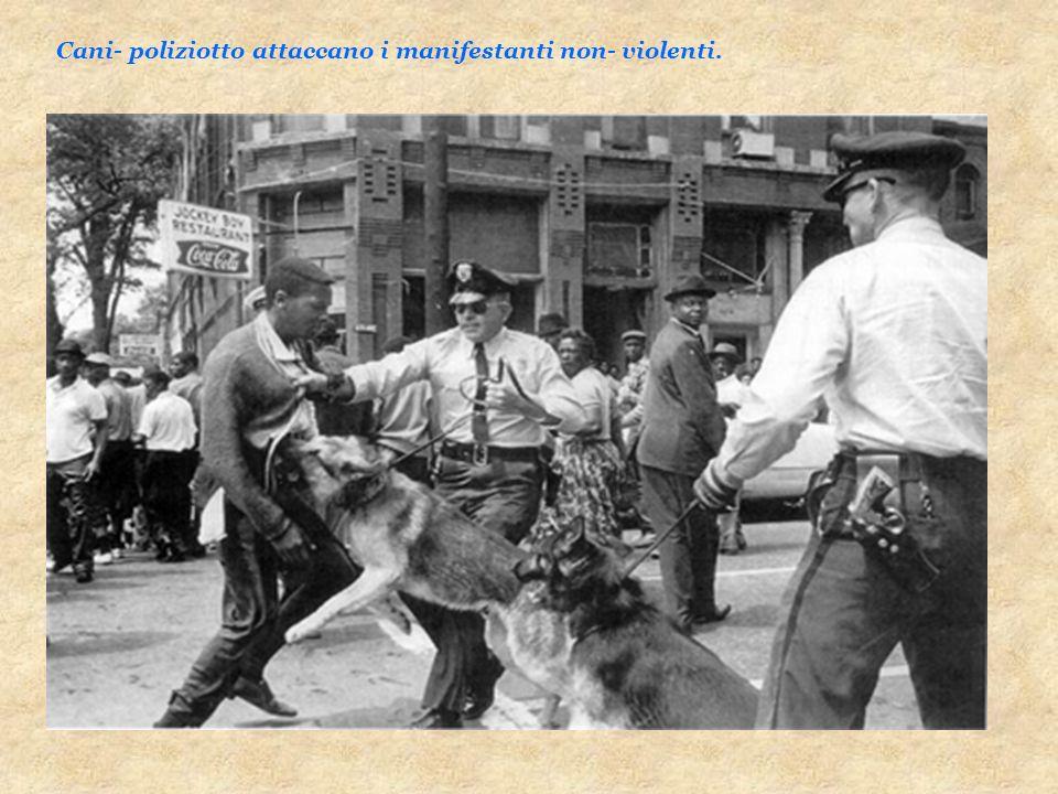 Cani- poliziotto attaccano i manifestanti non- violenti.