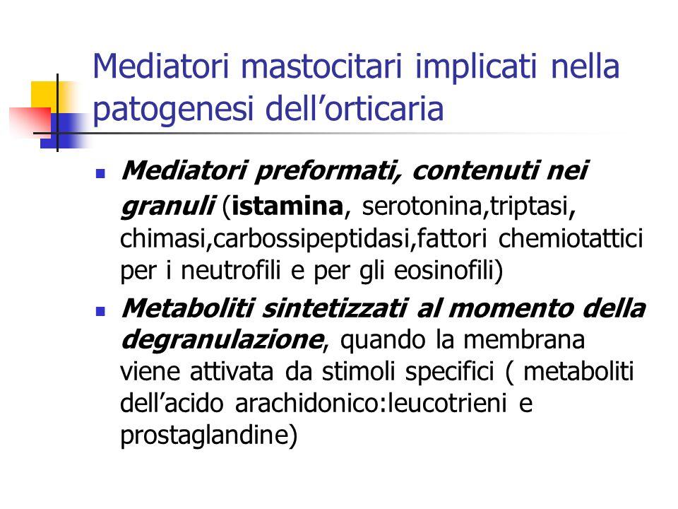 Mediatori mastocitari implicati nella patogenesi dellorticaria Mediatori preformati, contenuti nei granuli (istamina, serotonina,triptasi, chimasi,carbossipeptidasi,fattori chemiotattici per i neutrofili e per gli eosinofili) Metaboliti sintetizzati al momento della degranulazione, quando la membrana viene attivata da stimoli specifici ( metaboliti dellacido arachidonico:leucotrieni e prostaglandine)