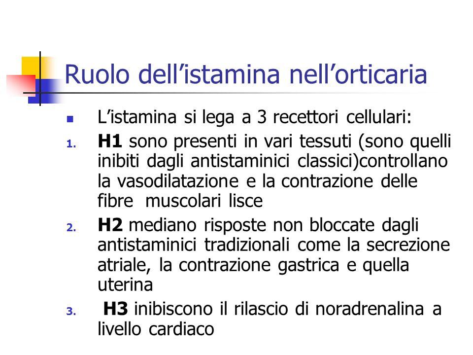 Ruolo dellistamina nellorticaria Listamina si lega a 3 recettori cellulari: 1.