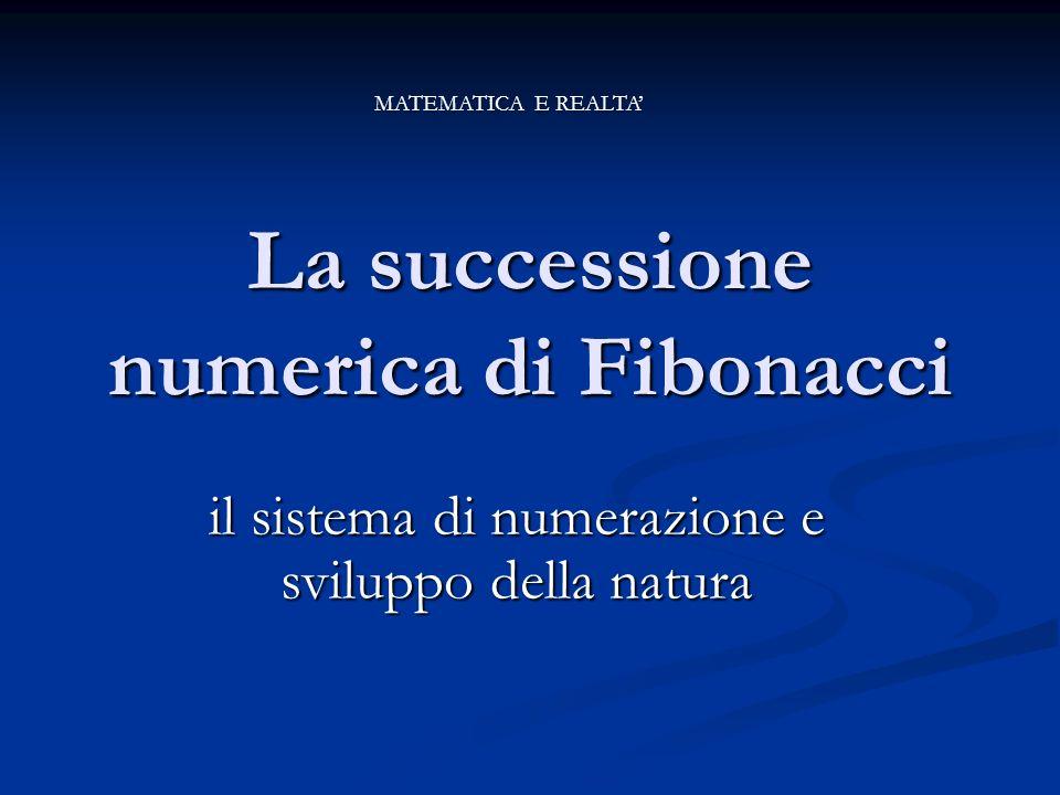 La successione numerica di Fibonacci il sistema di numerazione e sviluppo della natura MATEMATICA E REALTA