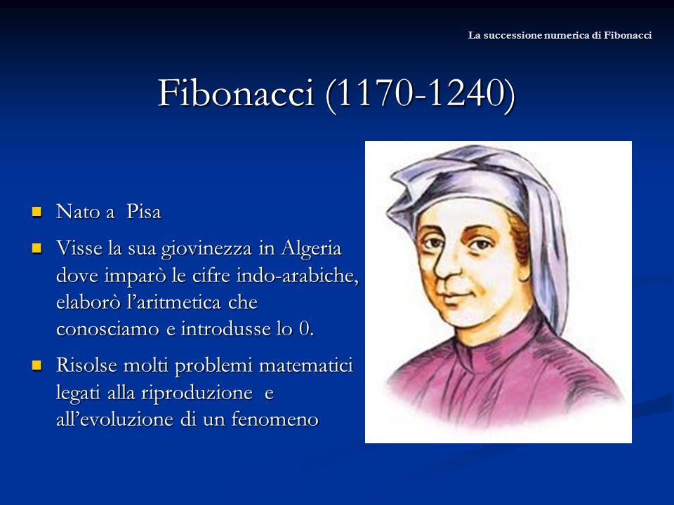 Nato a Pisa Nato a Pisa Visse la sua giovinezza in Algeria dove imparò le cifre indo-arabiche, elaborò laritmetica che conosciamo e introdusse lo 0. V