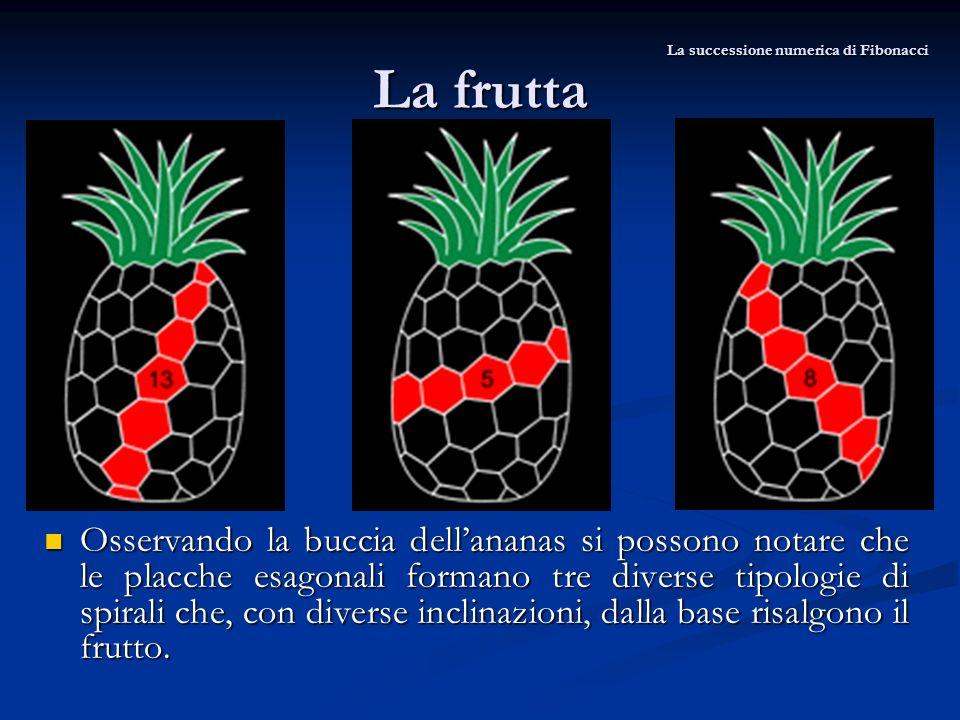La frutta Osservando la buccia dellananas si possono notare che le placche esagonali formano tre diverse tipologie di spirali che, con diverse inclina