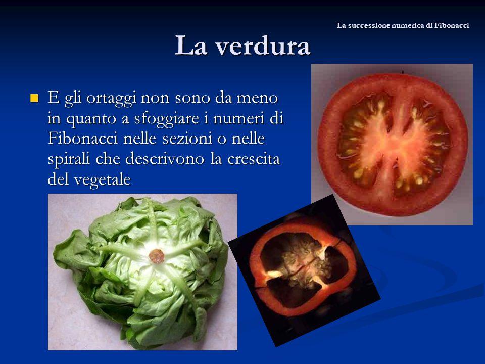 La verdura E gli ortaggi non sono da meno in quanto a sfoggiare i numeri di Fibonacci nelle sezioni o nelle spirali che descrivono la crescita del veg