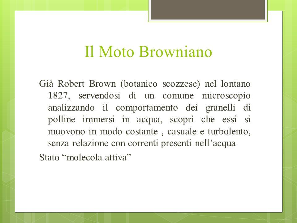 Il Moto Browniano Già Robert Brown (botanico scozzese) nel lontano 1827, servendosi di un comune microscopio analizzando il comportamento dei granelli