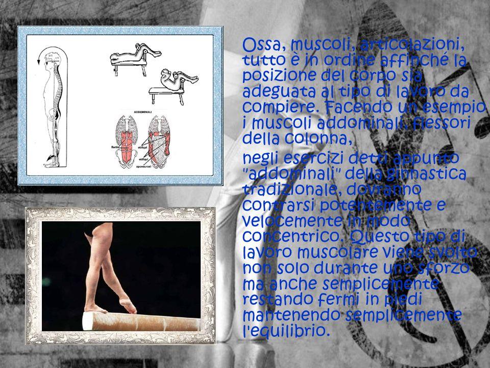 Ossa, muscoli, articolazioni, tutto è in ordine affinché la posizione del corpo sia adeguata al tipo di lavoro da compiere.